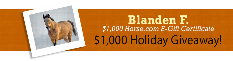 Horse.com's $1000 Holiday Giveaway Winner