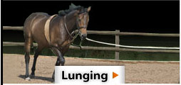Lunging!