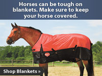 Horses can be tough on blankets. Keep your horse covered