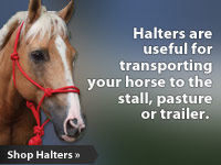 Halters are useful for transporting your horse to the stall, pasture or trailer