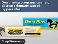 Deworming programs can help decrease damage caused by parasites