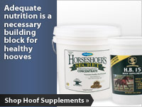 Adequate nutrition is a necessary building block for healthy hooves